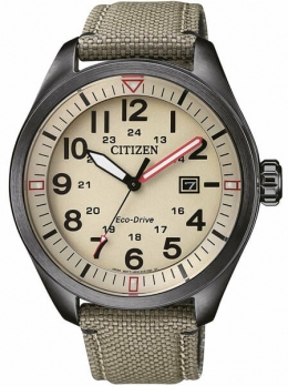 Часы CITIZEN AW5005-12X