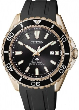 Часы CITIZEN BN0193-17E