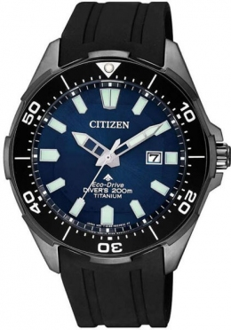 Часы CITIZEN BN0205-10L